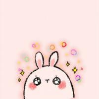 兔子时尚日记