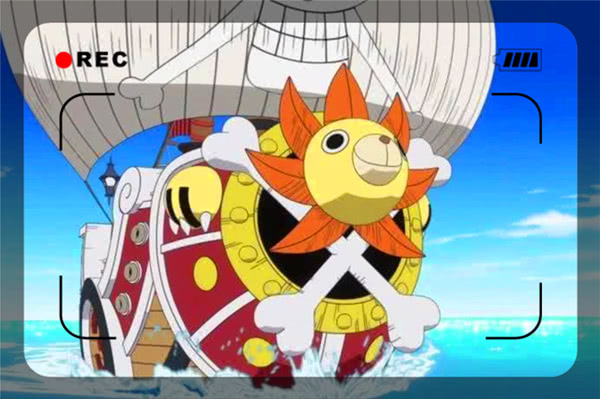 海贼王:副船主的三位候选人,索隆真力最强,她争议最少!