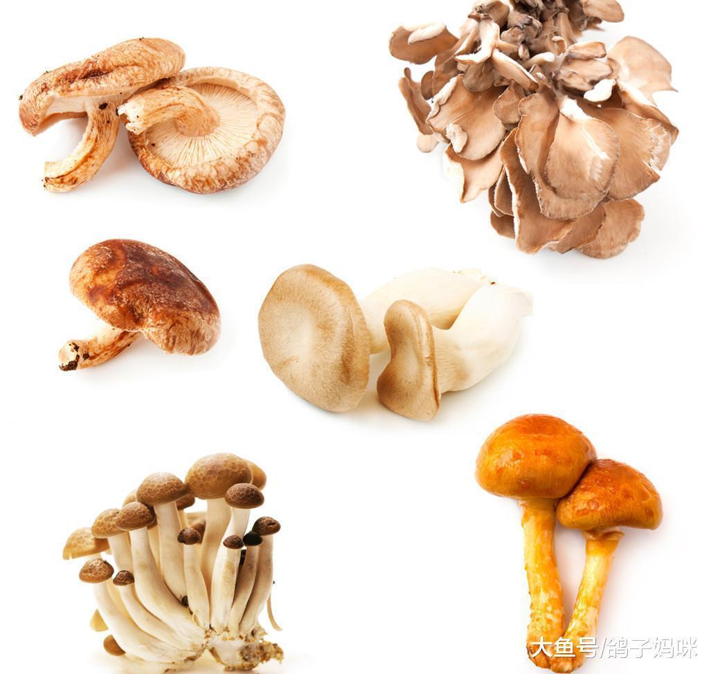 真假?吃蘑菇私处会变臭?传言是否属实?
