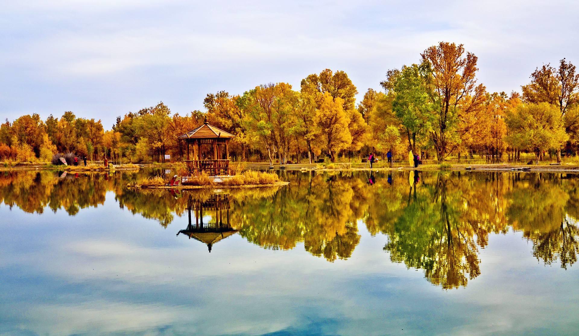 大漠行,向着向往已久的额济纳旗出发,看金黄色的胡杨林!