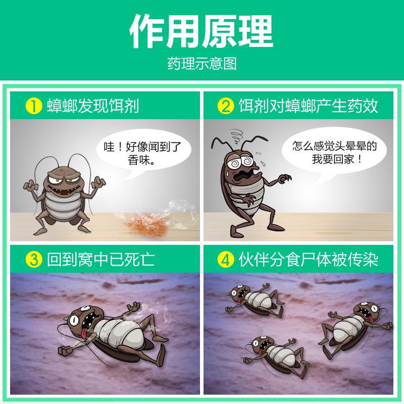 偷偷告诉你:蟑螂最怕它,厨房门口撒一点,直接一锅端,永不进门