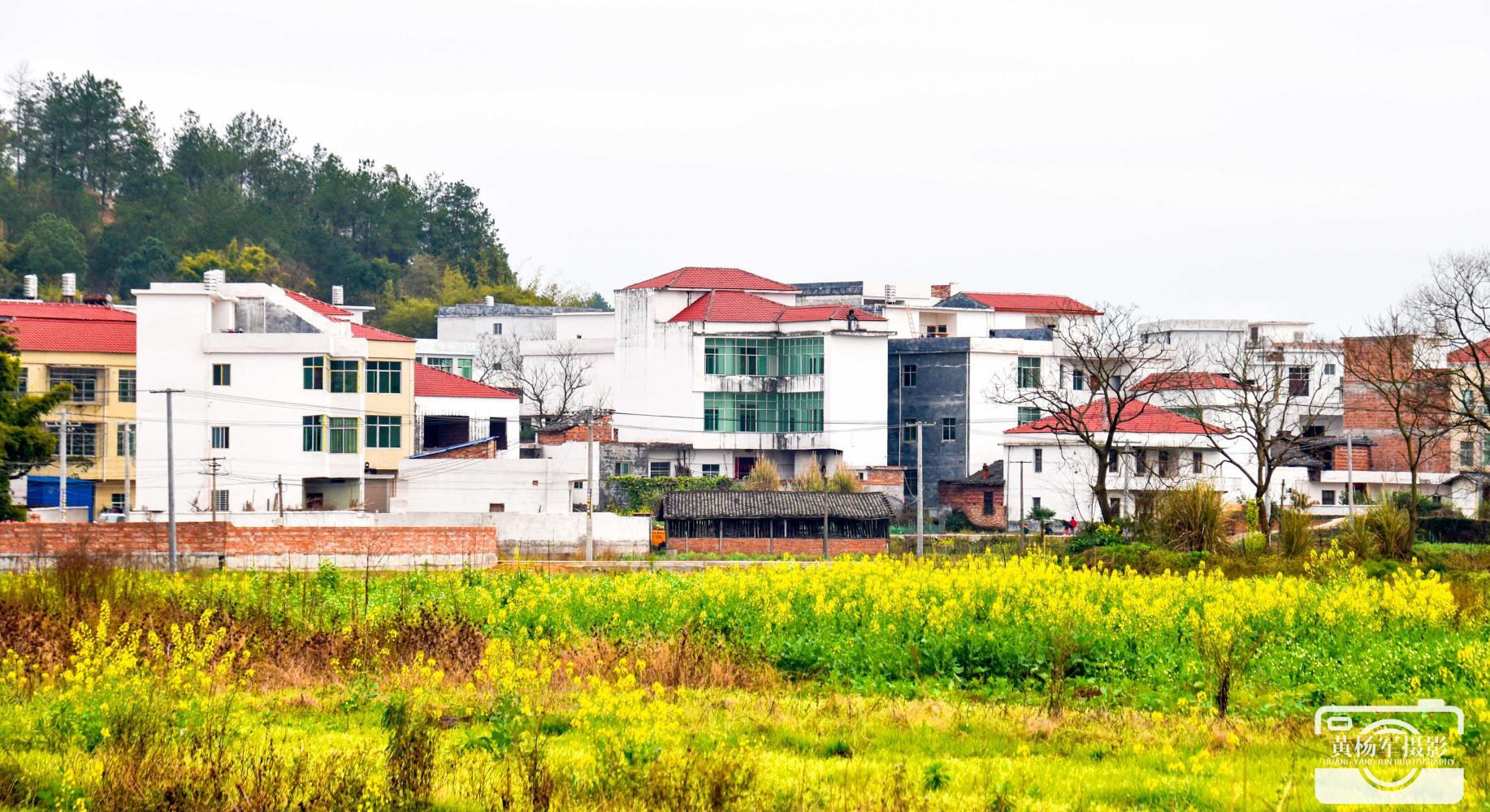 【美丽新农村(三)——金沙平台县·庙背村】