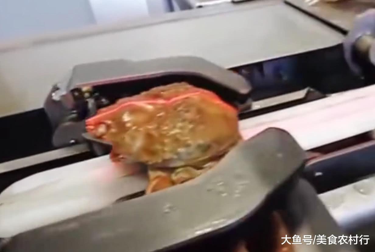 螃蟹吃起去费事,看看工场流火线临盆,您有出有感受很过瘾
