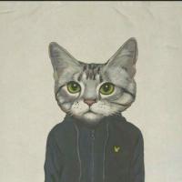 猫老大潮品