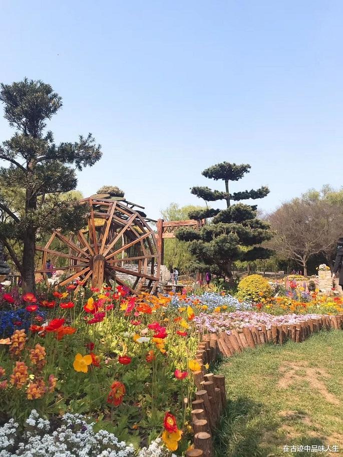 上海最美郊野公园,仿佛置身于秘境仙踪之中,好多人却不知道