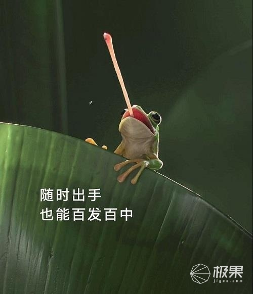 """荣耀V40发布会仅剩4天,荣耀官博今天扔了个""""大招"""" 好物评测 第2张"""