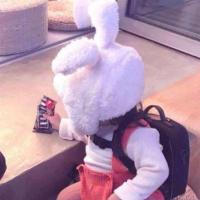 白兔说娱乐