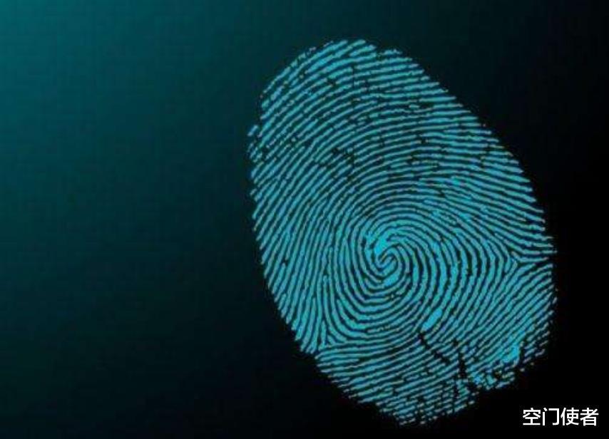 """为什么只有人类有指纹,我们真的是""""天选之子""""?"""