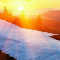 一缕冬日暖阳