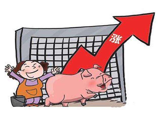猪价涨势猛,万红丛中一点绿!6月30日全国生猪价格涨跌表