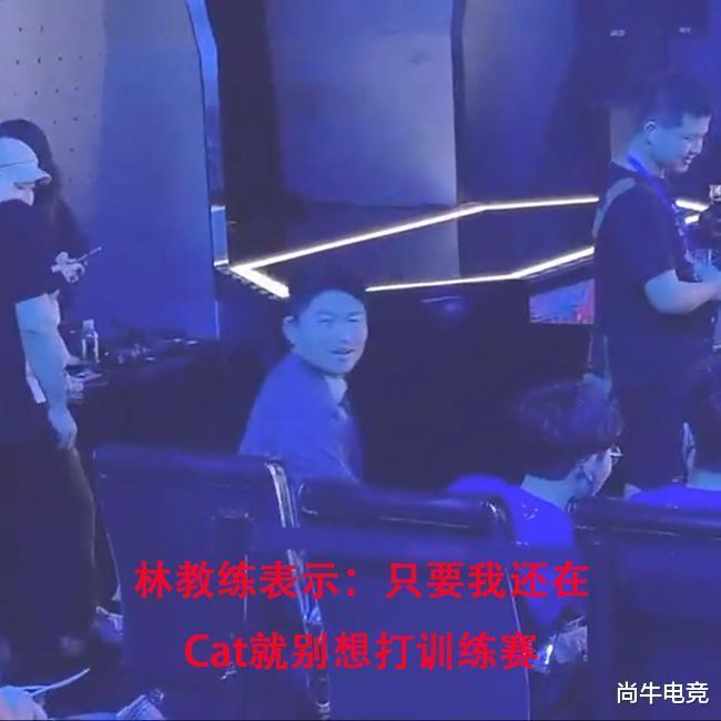 仙剑三_林教练直言被辞退找下家!怒怼灵儿我比你更懂电竞,猫神不配上场