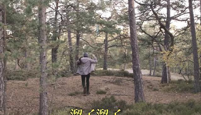 我的世界:如何做出更好的生存体验?mojang:把创意总监丢森林里 mojang 我的世界 手游热点  第7张