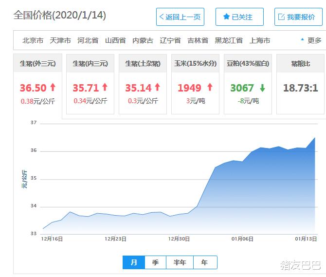 """猪价涨势喜人,均价达36.5元,新一轮""""涨价潮""""来了?附14日猪价"""