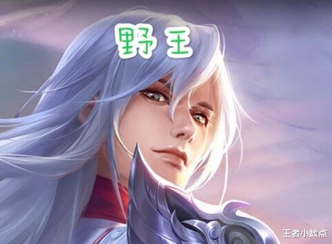 《【煜星娱乐测速登录】王者荣耀:为什么游戏只有野王和辅王呢,那其他位置就只能混吗》