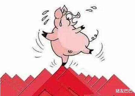 """蛋价""""黄""""了,2万吨冻肉来袭,猪价也要""""黄""""?附2月14日猪价"""