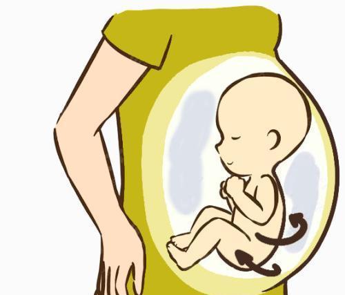 孕期这些习惯易致畸形儿 B超检查可预防