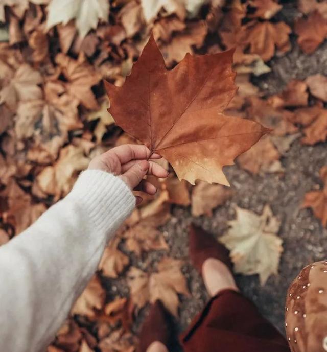"""秋冬看腻了冷色系,不如来一抹""""枫叶红""""!温柔是你,优雅也是你"""