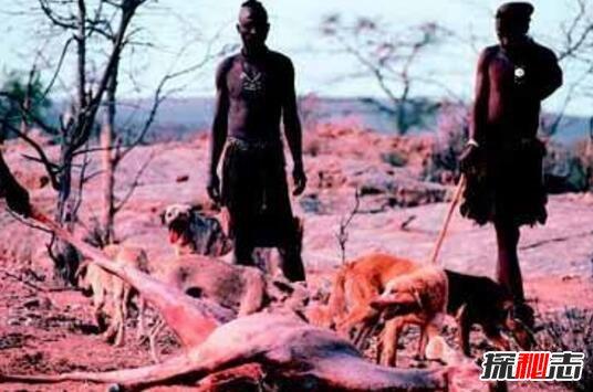 网游私服_细思极恐,人类除掉了地球的原住民