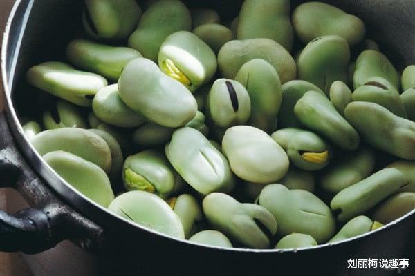 多吃点豆子能养生,这3种豆子营养价值丰富,具有健脑作用!