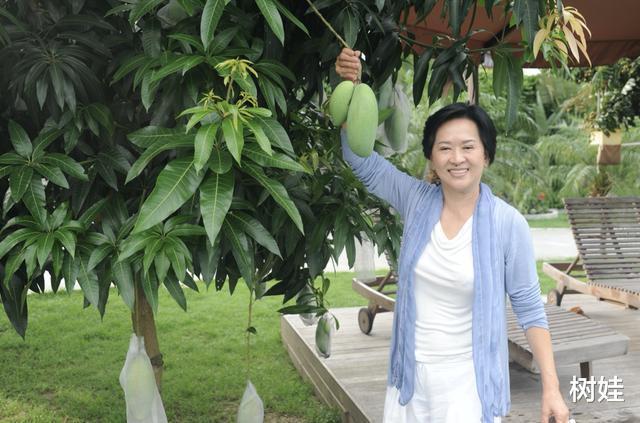 53岁邓兆尊4.8亿出售地皮靠父母遗产过活,不婚不育不怕坐吃山空