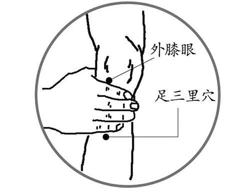 """保健要穴""""足三里"""",强身健体""""4功效"""""""