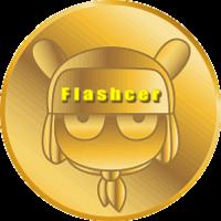 Flashcer