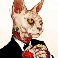 老猫爱珠宝