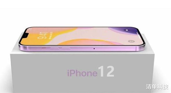iPhone12真香机,5.4英寸屏幕,48%的网友想买他