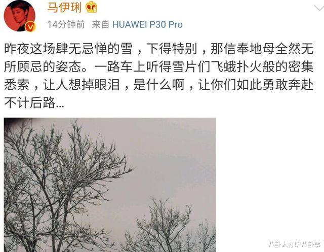 文章新恋情频传,马伊琍感伤发文称想哭,难道是后悔离婚了?