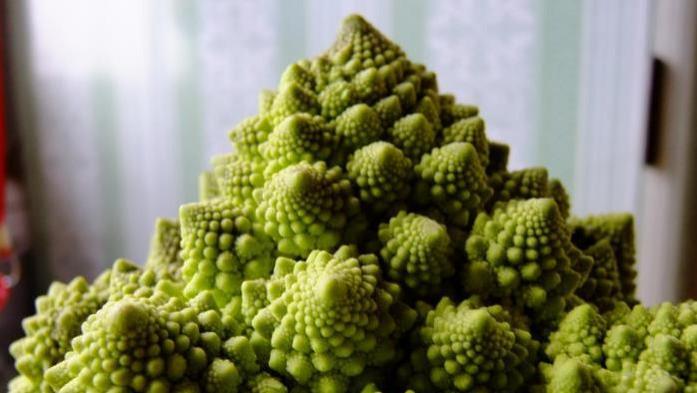 """有5种""""奇葩""""蔬果,吃过3种就堪称""""土豪""""吃货,图8大部分人不认识"""