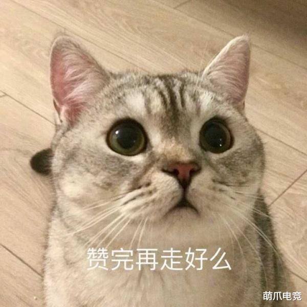 《【煜星平台注册网址】炉石传说官方为王师傅做了一张新卡?他们真的太像了!》