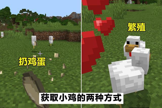 新水浒q传什么职业好_我的世界:设计巧妙的小鸡农场,从鸡蛋到熟鸡肉,全自动化运行