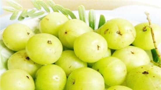 这是一种很特别的果子,入口又酸又苦接着就是无比甘甜,被称为油金子