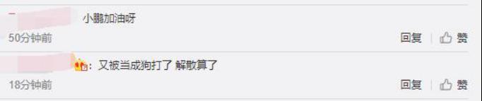 《【煜星娱乐官方登录平台】小鹏已经完全放弃了!选出快乐波比打野,10分钟死了4次》