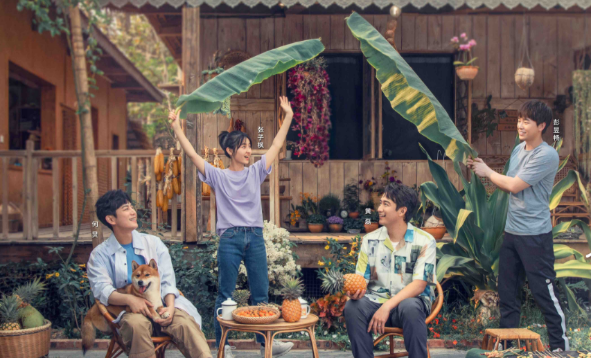《向往的生活4》彭昱畅带张子枫求开屏,节目组的调侃,你get了吗