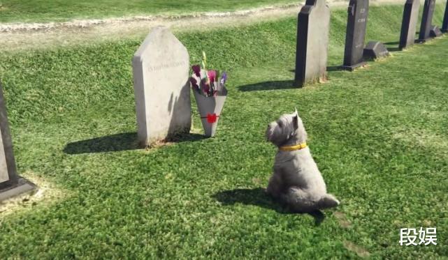 《GTA5》最触动人心的瞬间,小狗守护主人,直到生命的最后一刻!插图(2)