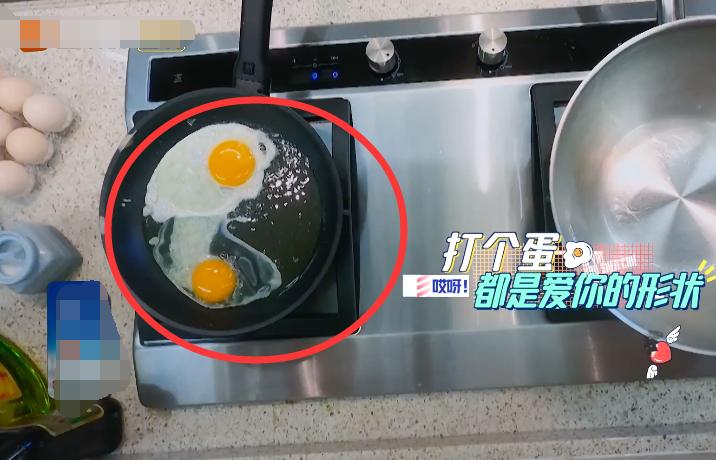 李湘下厨煎鸡蛋,当镜头拍到锅里的油,观众:太侮辱智商了