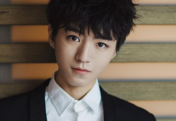 20岁出头的王俊凯,面对镜头自信从容,年龄不大名气特别高