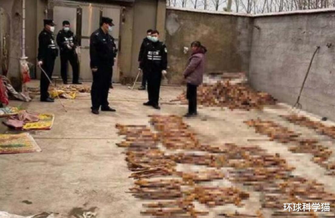 3年杀1.2万只黄鼠狼!请求赔960万元,它有何代价,咬人怎样办?