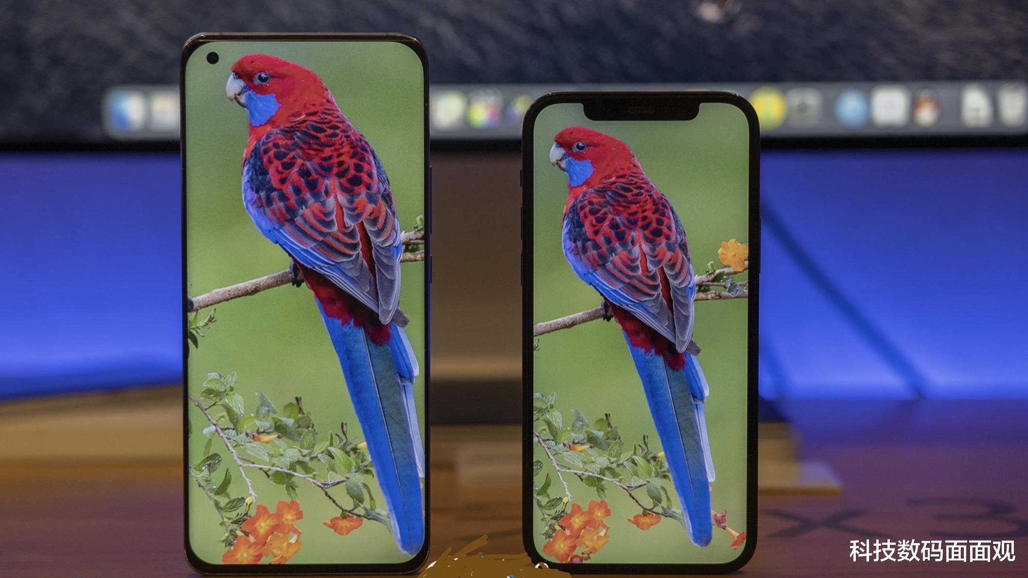 今日话题:你喜欢曲面屏还是直屏? 数码科技 第4张