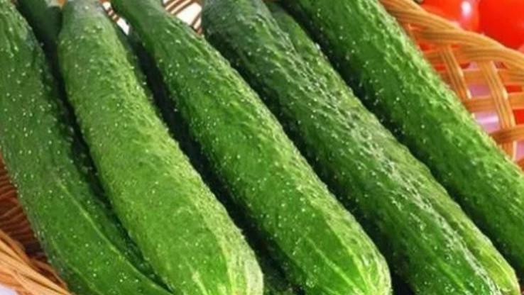 一根黄瓜,一家四口全住院,生吃都不行,吃黄瓜的4个禁忌要牢记