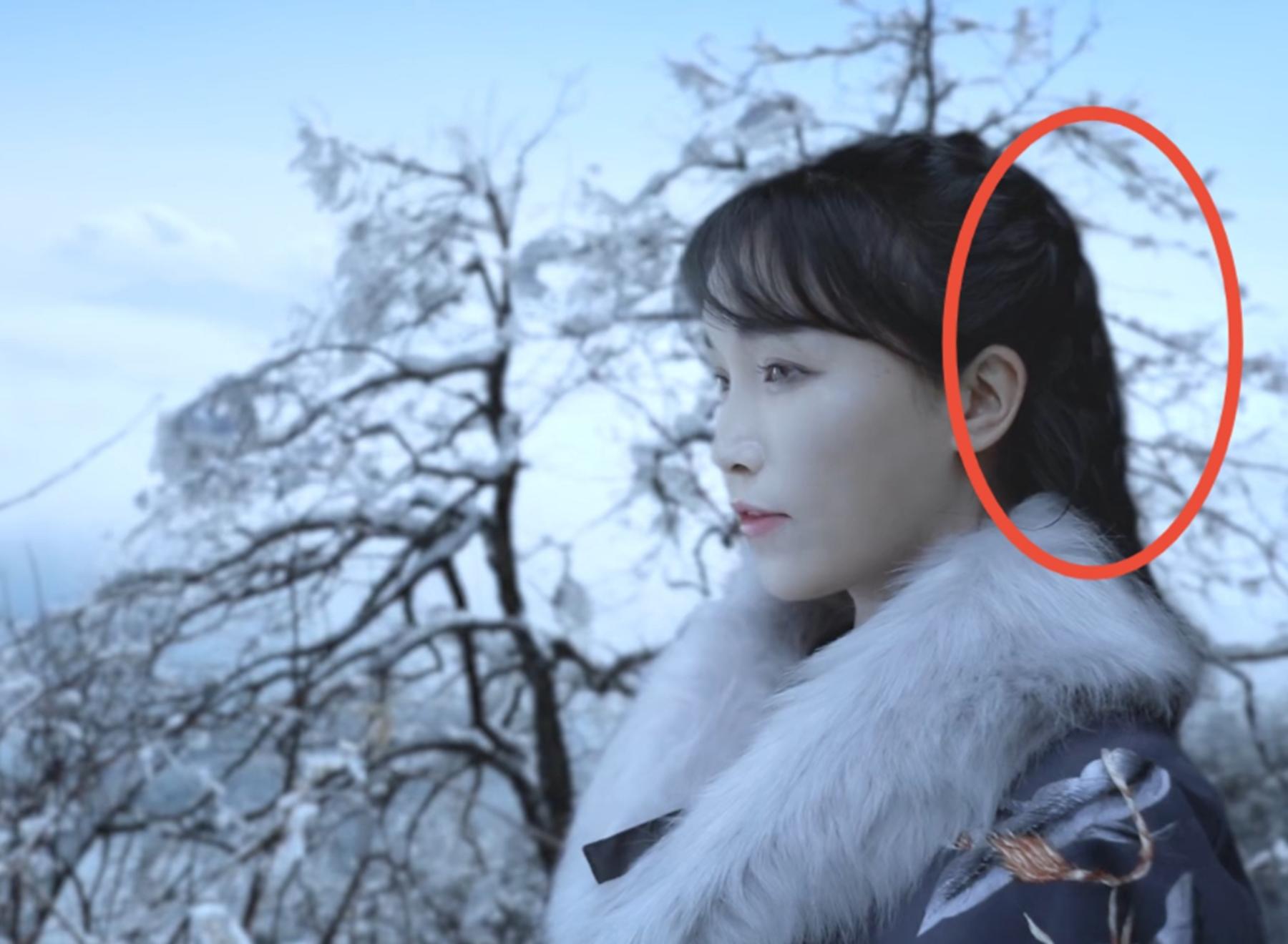 """李子柒视频陷入""""抠图风波""""?雪景造假痕迹明显,评论区褒贬不一"""