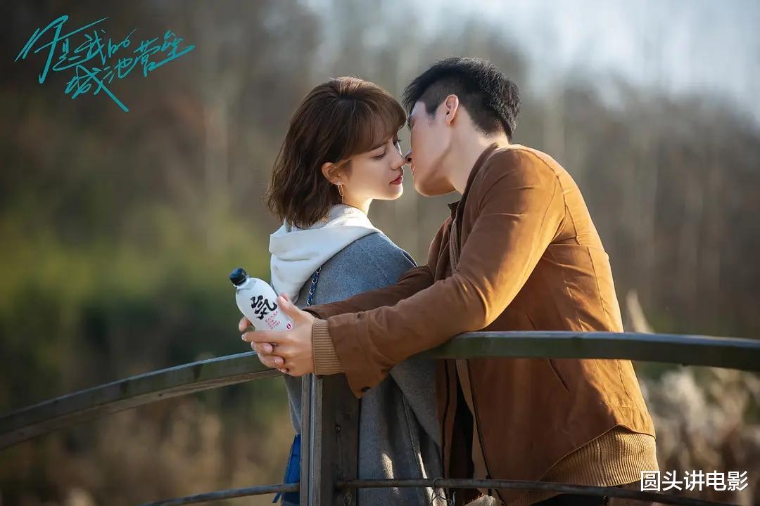 中国娱乐新闻_上半年五部高分甜宠剧,《司藤》只能第三,第一值得频频二刷!