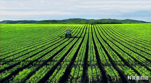 自给率低于50%:日本粮食安全指数,为什么比自给率90%的中国高?