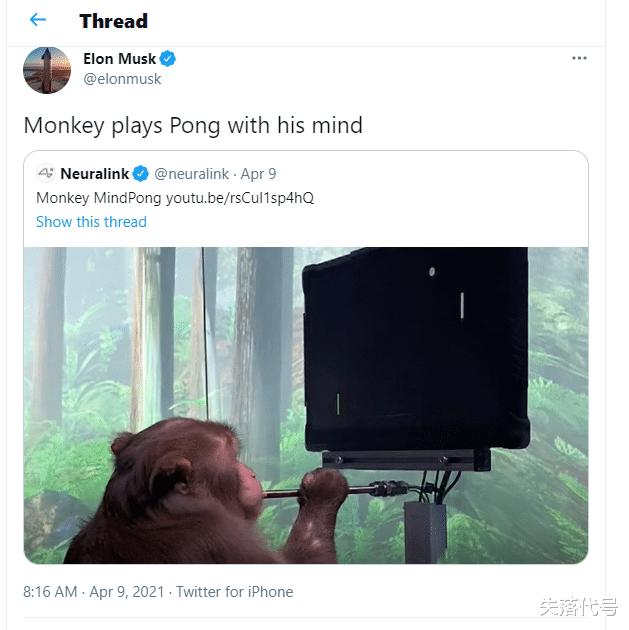 《【煜星娱乐注册】马斯克旗下公司实现猴子用意念玩游戏,你是期待还是恐惧?》