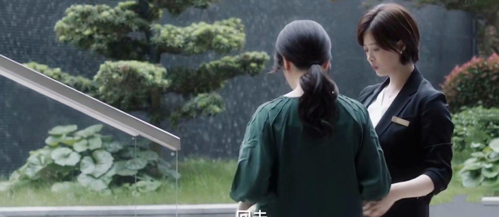 小舍得:真相大白,南建龙拒加蔡菊英的名字,与颜子悠有关