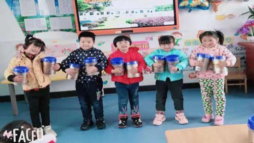 英山柳林河幼儿园向77名幼儿发放惠氏奶粉