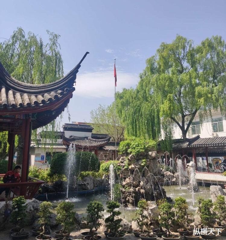 为期4天, 太本市第十三届盆景艺术节拉开帷幕, 展出