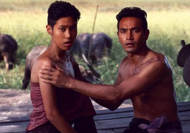 泰国十大恐怖片,最后一部被低估了