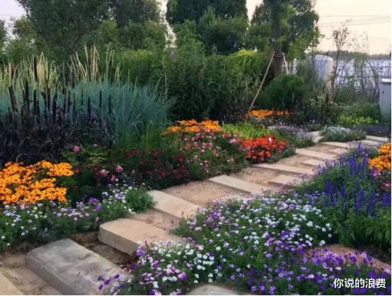 农业园区也能打造景点,花草旅游,形形色色的农业开辟形